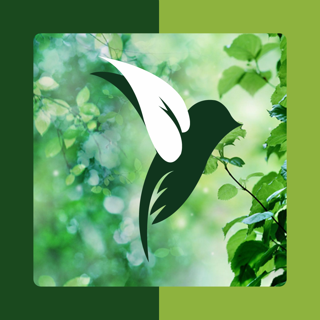 An Amazing Nature Photo Gallery App Free